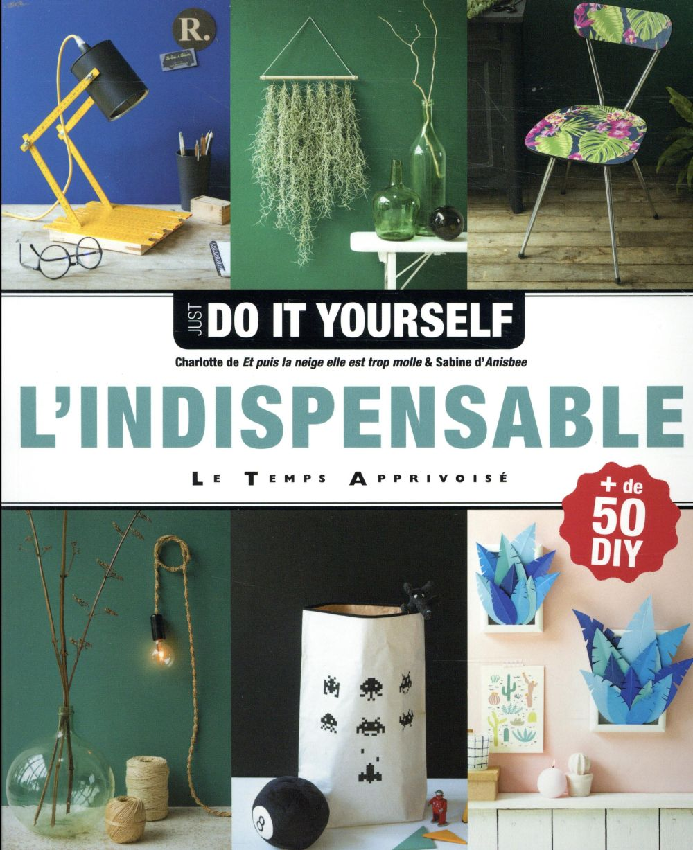 INDISPENSABLE JUST DO IT YOURSELF (L')